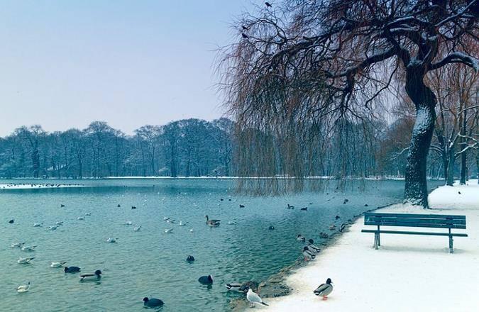 München Sehenswürdigkeiten Winter - Kleinhesseloher See im Winter