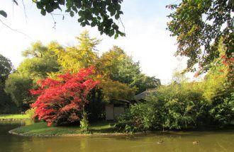 Japanisches Teehaus im Englischen Garten
